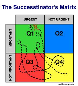 Successtinators-Matrix1-539x600